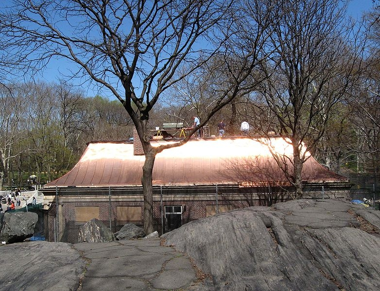 Types of metal roofs for homes homesteady for Most expensive roof material