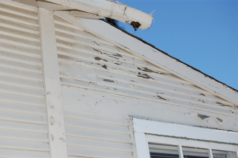 How To Remove Exterior Lead Paint Homesteady
