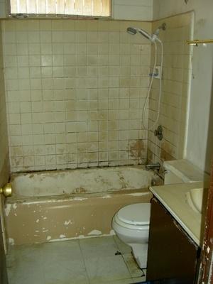 bathroom tile mold. Bathroom Tile Mold