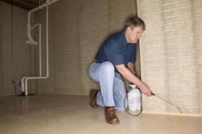sc 1 st  HomeSteady & Orange Oil Vs. Fumigation for Termite Control | HomeSteady
