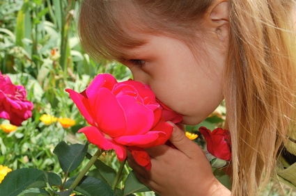 How Smell Sends Nonverbal Communication