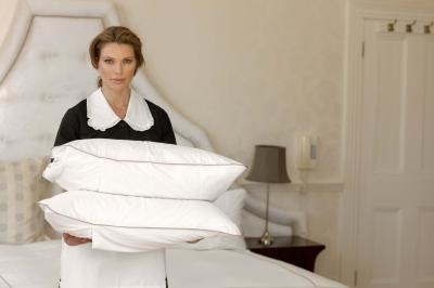how to steam clean pillows and mattresses