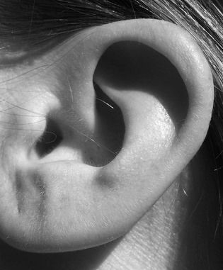 Why Are My Ears Echoing?