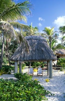 How To Make A Tiki Hut Palm Leaf Roof Homesteady